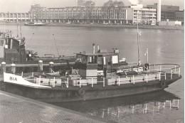 De ligplaats aan het IJ aan de kant van het Centraal Station in 1964